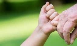 5 Tipos de seguros de vida a conhecer
