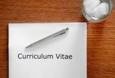 6 modelos de curriculum vitae: escolha o CV certo para cada vaga