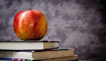 Como colocar as refeições escolares no IRS